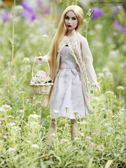 _MG_0573-0 (satoriOOAK) Tags: ooak custom customdoll jasonwudoll fashiondoll fr fashionroyalty action actionfigure agnesvonweiss agnes jordan blonde