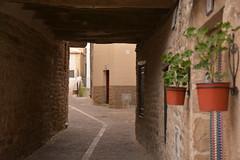 UJUE  ( NAVARRA ) (alfredo2057) Tags: alfredo senderismo paredes flores nikon lineas navarra pueblo planta puente color casa calles ventanas