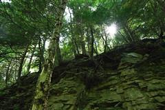 Deep green sea (r3d.rav3n) Tags: sarver pennsylvania unitedstates us