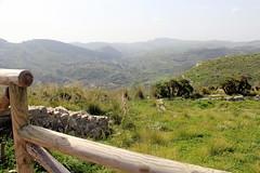 IMG_8005 (Vito Amorelli) Tags: segesta sicily dorictemple greektheater