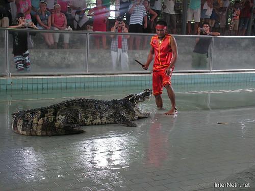 В пащу крокодилу Паттайя Таїланд Thailand InterNetri 24