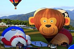 _Q9R2372 (Dream Delivered (Dreamer)) Tags: hot air balloon taiwan