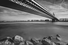 The Bridge (Of Light & Lenses) Tags: rhein rheinbrückeilverich düsseldorf bridge brücke blackandwhite bw schwarzweiss monochrome river fluss olympusem1 mzuiko918mm wide angle long time exposure langzeitbelichtung