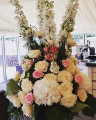 A pedestal arrangement standing on our French urn using tall delphiniums, lisianthus, roses and stocks @the_heathhouse . . . #parsleyandsagewedding #parsleyandsageflorist #stokeontrentflorist #theheathhouse #heatonhousefarm #inspiredbypetals #instapic #in (parsleyandsage11) Tags: heatonhousefarm flowers weddingseason flowerart flowerpower weddingbells wedding2018 floralarrangement inspiredbypetals weddinggoals floraldesigner flowermagic flowersofinstagram weddingideas parsleyandsagewedding parsleyandsageflorist weddinginspo instapic instawedding weddingday theheathhouse stokeontrentflorist
