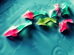sharks (annalobergh) Tags: squalo squali shark sharks caramelle caramellegommose caramella candies candy sweet food cibo blu dolce dolci