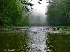 Ripples at Daybreak (shoot that!) Tags: blueriver ripples stream river water rocks sycamores fog daybreak dawn sunrise wilderness wildlife green silhouettes shimmer color nature rothrocks mill bridge fishing smallmouth morgan 2018 joenewton shootthat wade crankbait corydonindiana greenville rod tackle gps trees shadows clear fish deer snakes beauty paradise tree forest landscape sky wood mist tramquility perfect horizon
