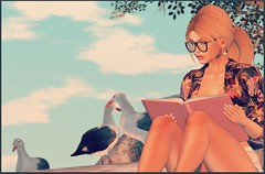 FabFree:  Be A Flamingo In A Flock Of Seagulls (Love Trill) Tags: elua cae loulouco blueberry soul2soulbay whatnext glamaffair ikon catwa maitreya