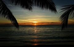 Ile Sainte-Marie Sunset (Rod Waddington) Tags: africa african afrique afrika madagascar malagasy ile saintmarie island sunset palms clouds water indian ocean beach light outdoor waves reflection sunlight