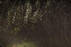 bthwaterethBloMDrbgbElobdm2010-08-30edmIMG_8064.jpg (rachelgreenbelt) Tags: ghigreenbelthomesinc usa gardening greenbelt northamerica midatlanticregion ouryard waterscape scapes manmadeobject 710natural maryland americas sprinkler