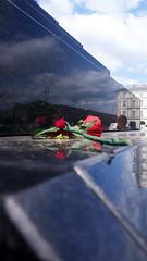 Smolensk - rose (Darek Drapala) Tags: smolensk memory remembering monument reflection reflects warsaw warszawa panasonic poland polska panasonicg5 lumix light history