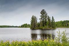 Eploring the land (Jackx001) Tags: 2018 algonquin bushcraft camping canada jacknobre june nature ontario solocamping free life rewild lakes rivers creeks