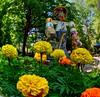 The Tin Man (Phyllis74) Tags: hiddenhillnurserysculpturegarden utica indiana garden tinman flowers scenery landscape art whimsical sculpture hiddenhills lensbabycircularfisheye fisheye jerryvoyles