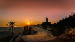 Golden Way (K.H.Reichert [ not explored ]) Tags: lighthouse leuchtturm sunset sonnenuntergang himmel sunstar gozo palm meer goldenway malta goldenhour