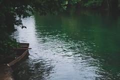 Happy Island (bluishgreen12) Tags: sanskimost otoksrece happyisland sana sanariver summer bosnia bosniaandherzegovina boar river green vintageprime vintagelens carlzeissplanar 50mm f17