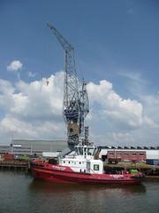 RT Evolution at Wilhelminahafen Rotterdam (jimcnb) Tags: geo:lat=5189903185 geo:lon=439659118 geotagged schiff schiedam zuidholland niederlande 2018 mai rotterdam ship boat vessel nld