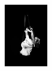 """Le Cirque Français"" (The Blue Water Lily's Company) Tags: fdrouet nb bw monochrome monochrom cirque circus enfant child nikon d90"