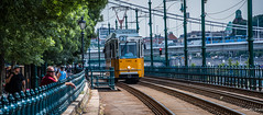 2018 - Hungary - Budapest - Nr. 2 Tram (Ted's photos - For Me & You) Tags: 2018 budapest cropped hungary nikon nikond750 nikonfx tedmcgrath tedsphotos vignetting tram2 budapesttram budapesttram2 tram tracks villamos budapestvillamos villamosbudapest railing railings traintracks train