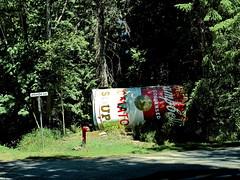 Art in the Woods (robinb44) Tags: hornbyisland salishsea georgiastrait bc britishcolumbia art soupcan grahamherbert popart