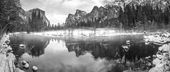 Black & White Yosemite Fine Art Photography! Yosemite National Park Winter Snow Landscape! Valley View Merced River El Capitan! Sony A7R II Mirrorless & Carl Zeiss Vario-Tessar T* FE 16-35mm F4 ZA OSS Lens SEL1635Z! Scenic Yosemite California Sunset Dusk (45SURF Hero's Odyssey Mythology Landscapes & Godde) Tags: black white yosemite fine art photography national park winter snow landscape valley view merced river el capitan sony a7r ii mirrorless carl zeiss variotessar t fe 1635mm f4 za oss lens sel1635z scenic california sunset dusk