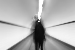 Hold on 2 sec (Elios.k) Tags: horizontal indoors people oneperson man walk walking pedestrian crossingtunnel tunnel sintannatunnel stannatunnel underwatertunnel riverscheldt figure silhouette ghost longexposure slowshutterspeed movement motion motionblur following perspective blackandwhite bw monochrome travel travelling november2017 canon 5dmkii photography antwerp belgium belgique flanders flemishregion europe