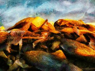 Bladder Kelp Washed with Sunshine