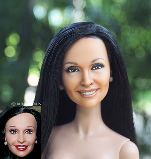 repaint Barbie celebrities doll