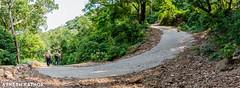 Roads less travelled (asheshr) Tags: 18140mm asheshrathor d7200 mahendragiri nikkon nikkor nikon nikor odisha orissa road curve ucurve hillroad trekking trek roadslesstravelled jungleroad forest wood tree pano panorama panoramic