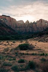 Zion 2018-099_ILCE-7RM3-35 mm-180529_180529-ILCE-7RM3-35 mm-183750__STA5341 (Staufhammer) Tags: sony sonya7riii a7riii sonyalpha sony1635mmf28gm sony1635mm sonygm sony85mmf18 zion nationalparks nationalpark zionnationalpark grandcanyon landscape alphashooters travel valley fire state park valleyoffire valleyoffirestatepark