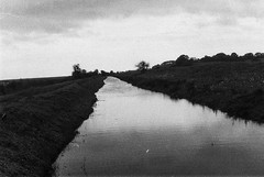 000034 (Olga. S) Tags: 35mmfilm pentax spotomatic kentmere100 monochrome blackandwhite landscape river rural