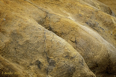 Cracks in Sandstone Rock (Greatest Paka Photography) Tags: sand crack rock texture sandstone natural coast davenport davenportbluffs color ground earth