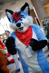 FOX_3266 (Kyoto Fox) Tags: nook nfc nfc2018 nordicfuzzcon nordic fuzz con sweden furry fursuit fursuits upplandsväsby stockholmslän se
