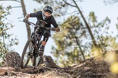 VTT descente (Y.Ma Photographies) Tags: downhill vtt mountainbike bike transition transitionbike rocday forest tree rider jump slide nikon sigma d500 d800 85mm 150600mm ambiance