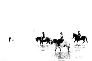 Riders in the Wadden Sea