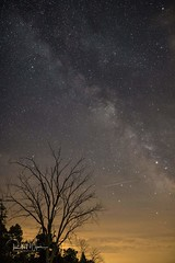 Milky way at Point Pelee (r.wiper) Tags: milkyway pointpeleenationalpark astrophotography persiedmetoershower