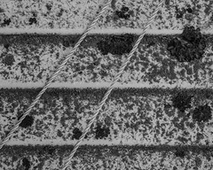 IMGP3435 (agianelo) Tags: camper siding rope monochrome growth bw bn blackandwhite texture abstract