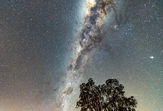 Milky Way and Perseids Meteor (Merrillie) Tags: nsw sky perseidsmeteor astronomy milkyway meteor astrophotography australia nightsky gresford stars perseids night newsouthwales astro