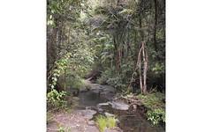 Lot 53 Boorabee Mountain Retreat Estate, Boorabee Creek Road, Boorabee Park NSW