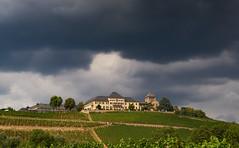 Schloss Johannisberg 2018 (ckhde) Tags: teletessart485 zeiss ilce7rii rheingau riesling wine zm architecture carlzeiss