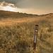 Oregon Trail - Keeney Historic Site