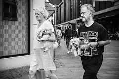 Images on the run... (Sean Bodin images) Tags: streetphotography streetlife strøget seanbodin streetportrait denmark documentary delditkbh danmark dog people photojournalism photography everydaylife enhyldesttilhverdagen hverdagsliv hverdagskultur voreskbh visitdenmark visitcopenhagen