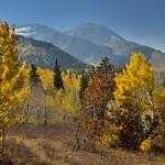 An Autumn Breeze Blows Gently thumbnail