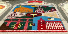 Tapis de fleurs de la délégation espagnole (CORMA) Tags: 2018 belgique belgium bruxelles brussels tapisdefleurs flowercarpet europe monumentsofunescoinflowers espagne