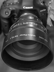 Carl Zeiss Macro-Planar (Werner Schnell Images (2.stream)) Tags: ws carl zeiss objektiv lens windowshopping shop laden macroplanar planar 50t21 canon