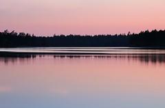 20180522-119P (m-klueber.de) Tags: 20180522119f 20180522 2018 mkbildkatalog nordeuropa skandinavien scandinavia schweden sweden sverige västergötland närke tiveden tivedennationalpark nationalpark see stora trehörningen kiefer kiefern ufer spiegelung rosa abend 20180522119p portfolio bildauswahl