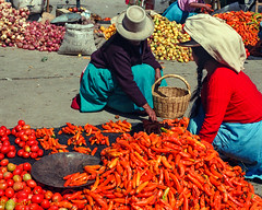 red aji and tomatoes Andean Market (MiguelVP) Tags: peru market women red people tomatoes aji