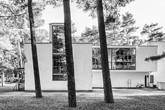 Dessau-Roßlau_Meisterhäuser_IMG_0350 (milanpaul) Tags: 2018 alt architektur august bauhaus canoneos6d dessauroslau deutschland gebäude germany historisch meisterhäuser sachsenanhalt tamron2470mmf28divcusd unescoweltkulturerbe waltergropius