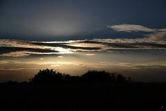 OOC (st.weber71) Tags: nikon nrw niederrhein natur deutschland d850 abendstimmung sonne sonnenuntergang germany romantik himmel licht sonnenschein sonnenlicht bäume wolken landschaft landscape gegenlicht ooc outofcam