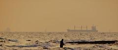 walker (blazedelacroix) Tags: walker walking dead yellow gold sunset blazedelacroix flickr