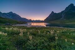 2018-07-31 Valloire Galibier (marczoccarato) Tags: longexposure laowa12mm28 montagne naturavista nature torrent nikond850 valloire france jeangabrielsoula poselongue rivière alpes coucherdesoleil sunset