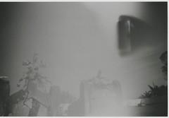 002.jpg (Tai Moura) Tags: vx400 konica filme film black white preto e branco olympustrip100r lomo lomography lomografia
